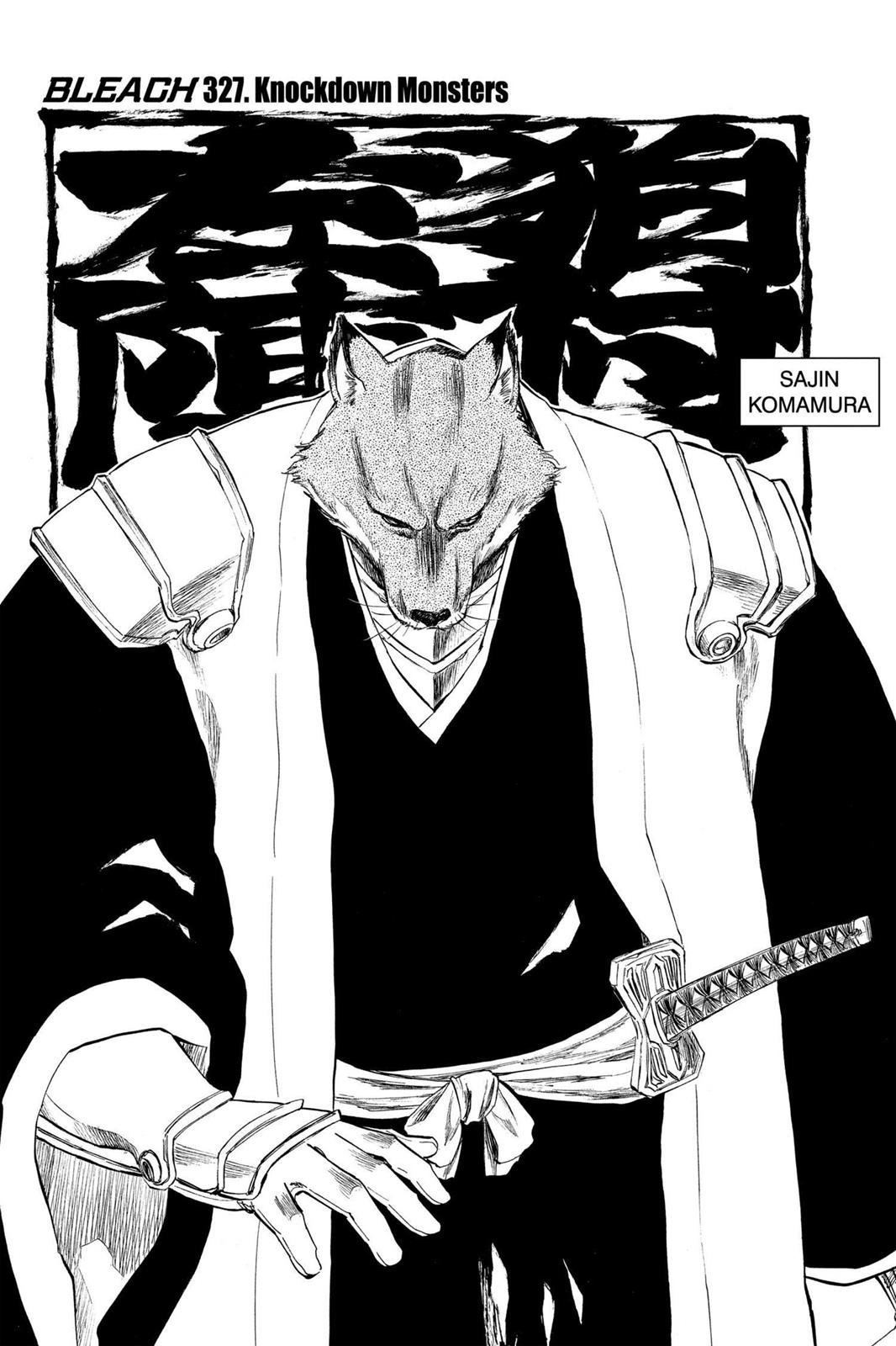 Bleach, Chapter 327 image 011