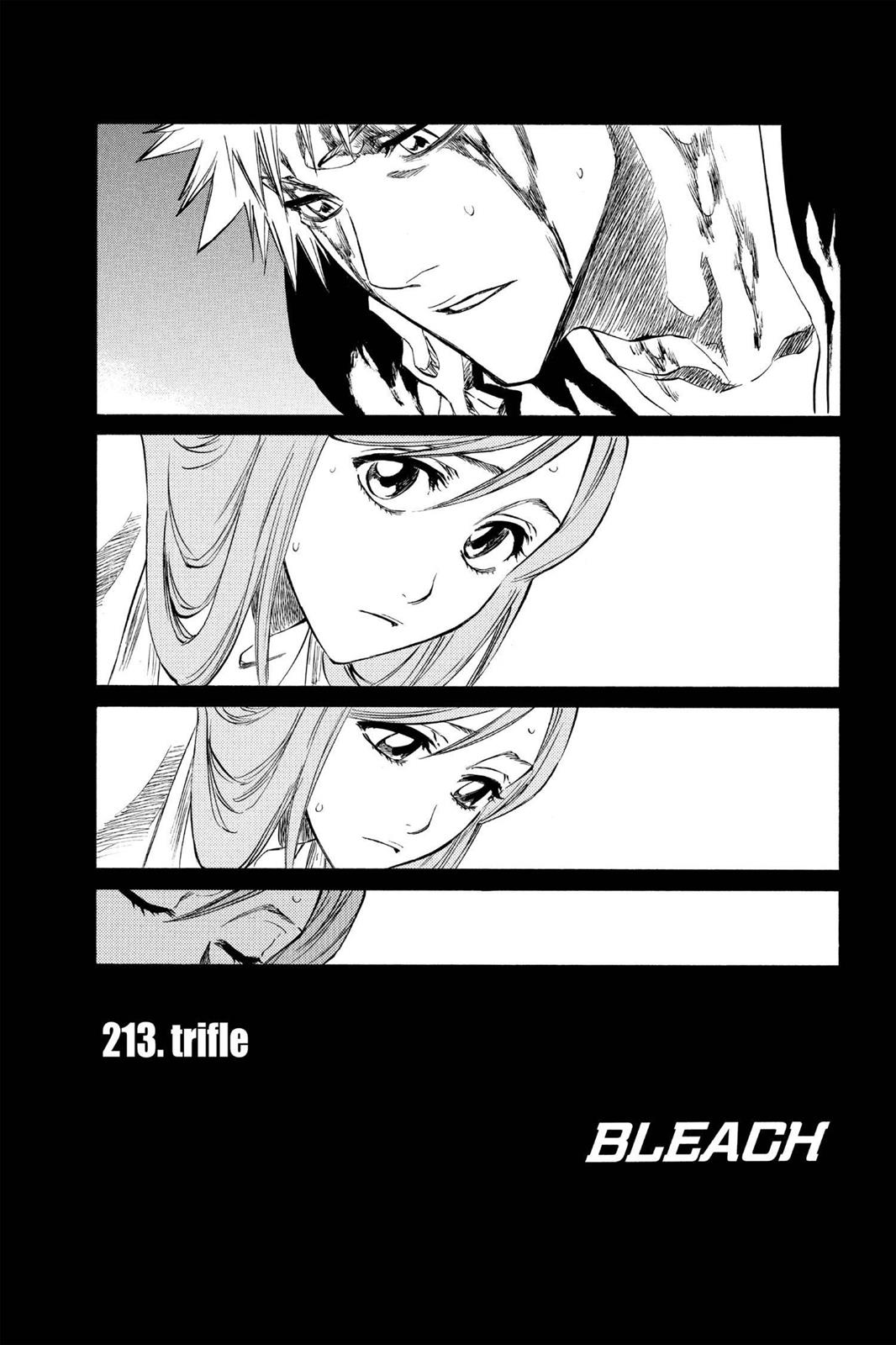 Bleach, Chapter 213 image 008