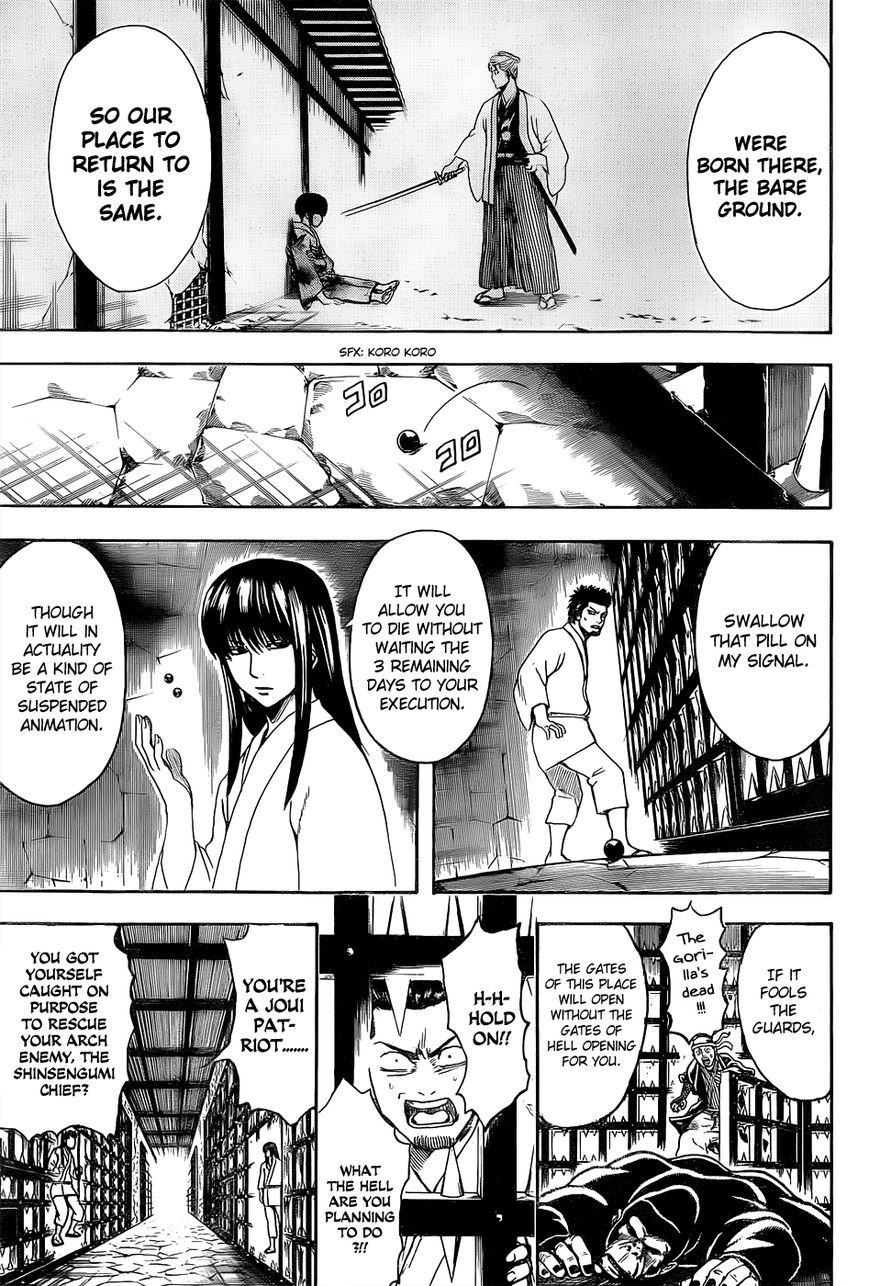 Gintama Chapter, 529 image 007