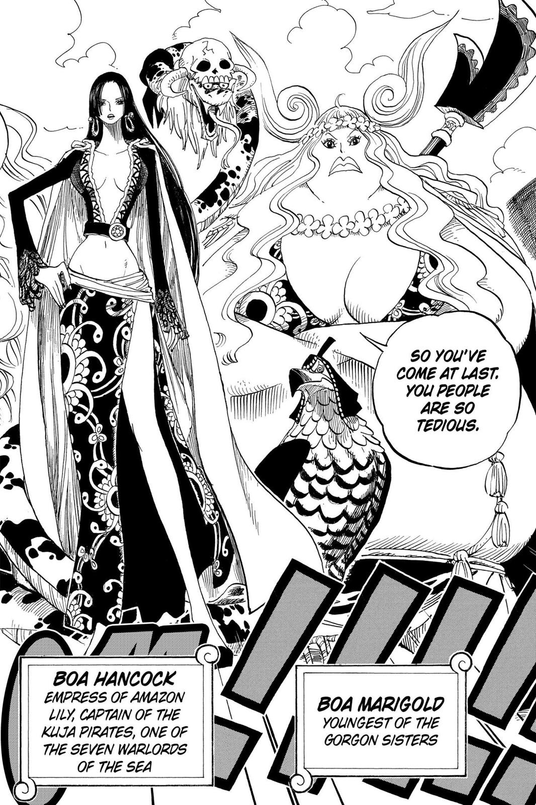 One Piece, Chapter 516 image 013