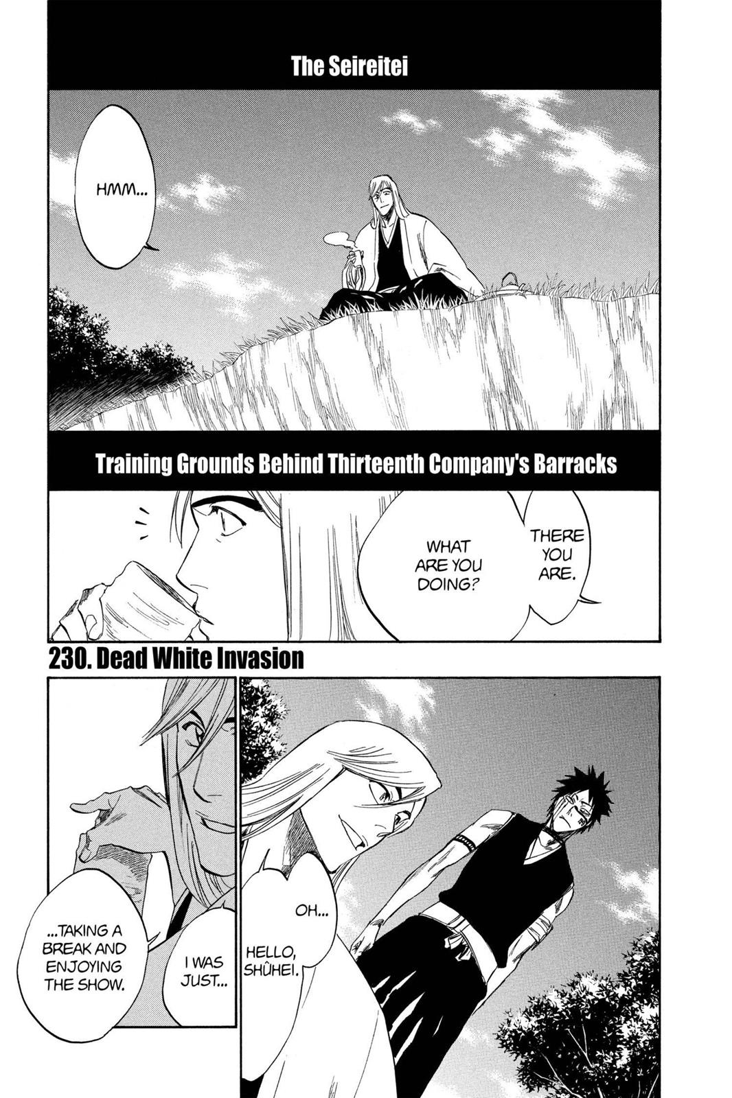 Bleach, Chapter 230 image 001
