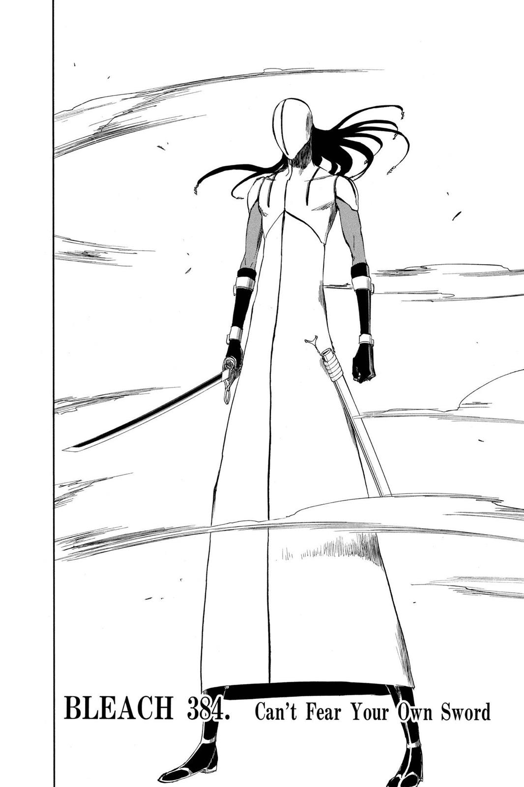 Bleach, Chapter 384 image 004