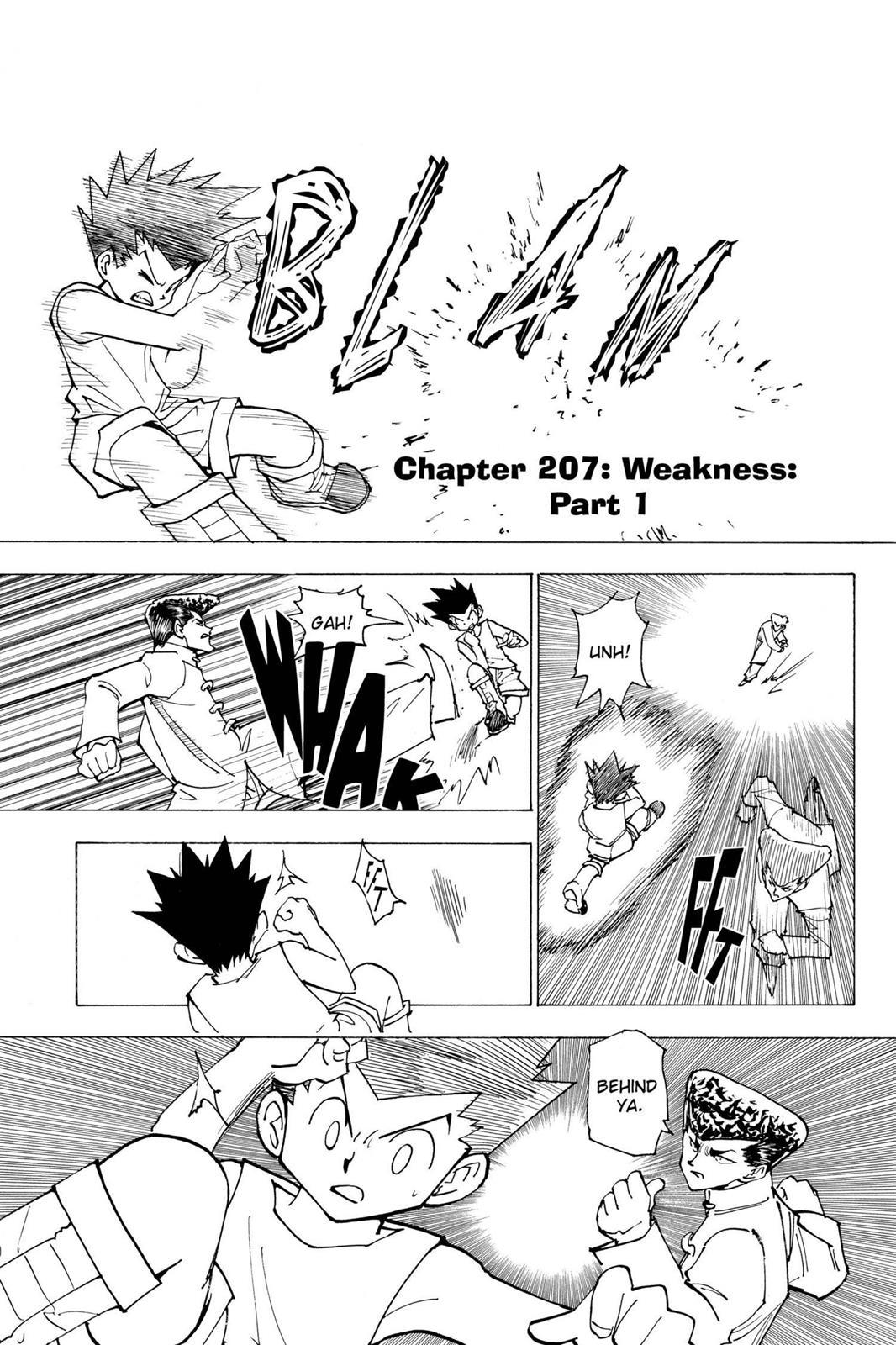 Hunter X Hunter, Chapter 207 image 001