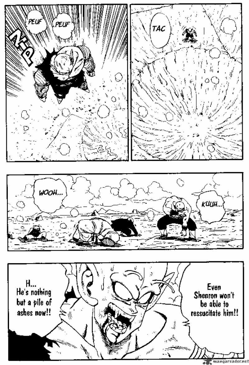 Dragon Ball, Chapter 193 image 005