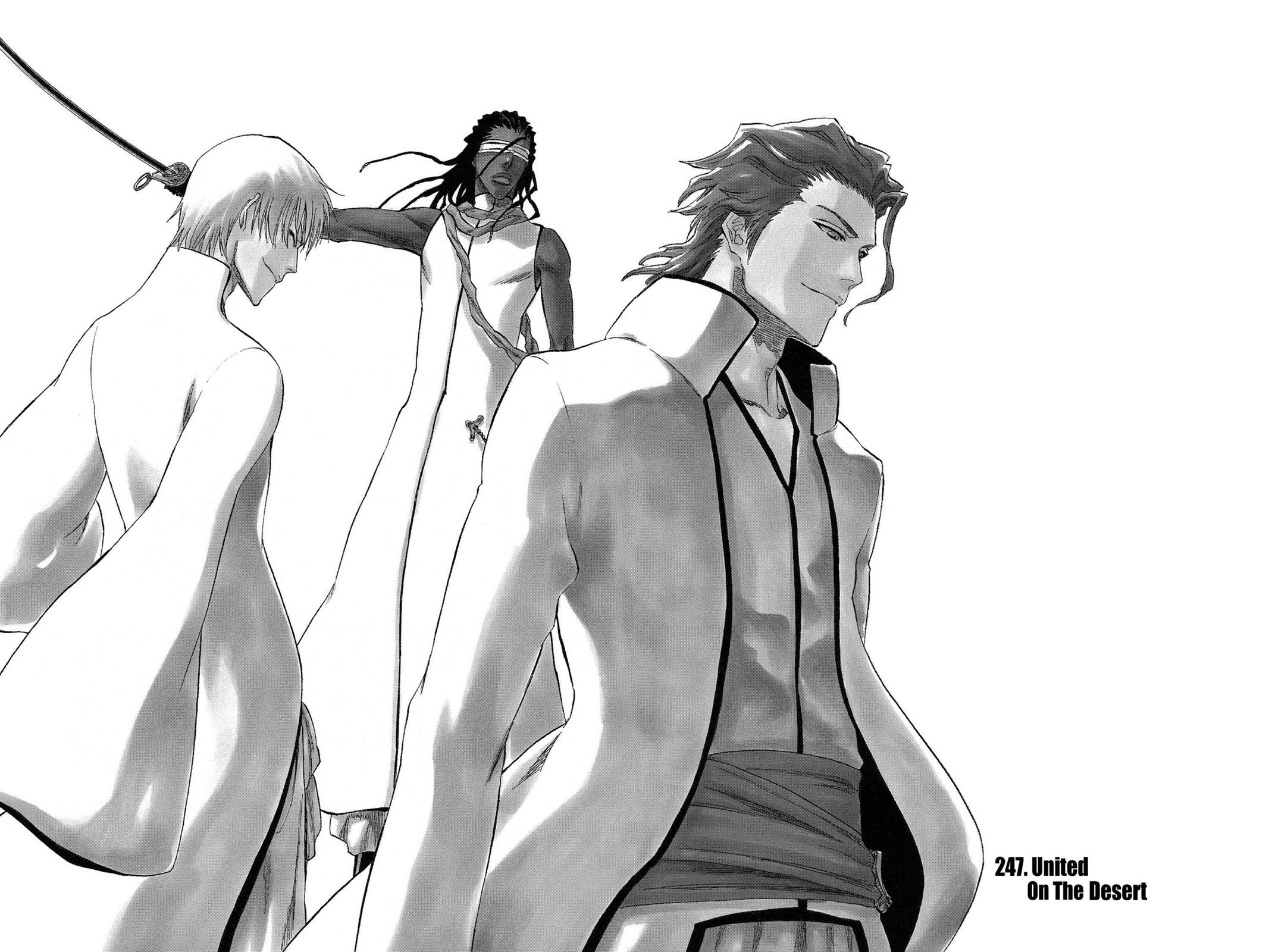 Bleach, Chapter 247 image 003