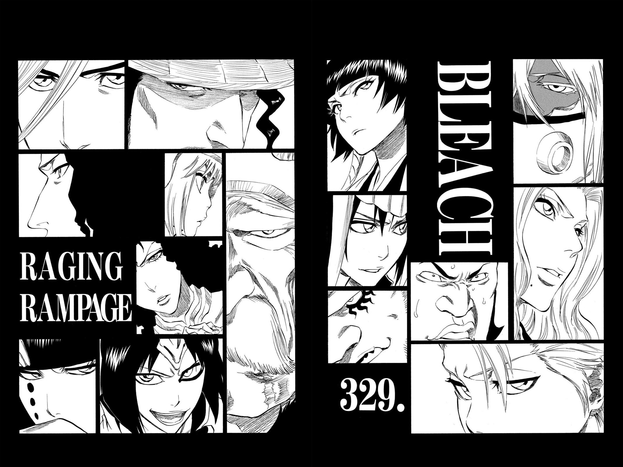 Bleach, Chapter 329 image 008