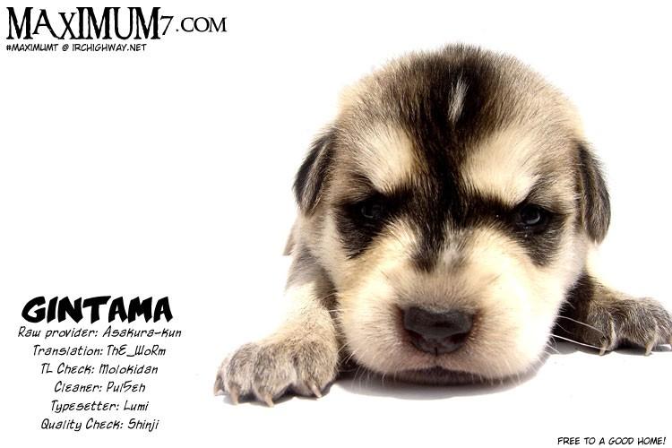 Gintama Chapter, 31 image 001