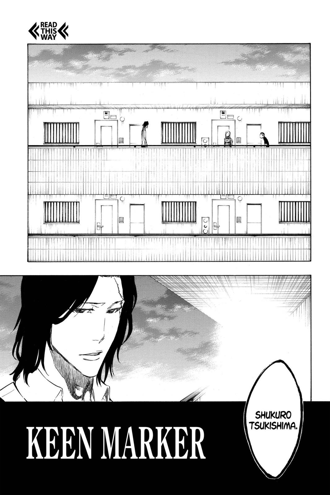 Bleach, Chapter 439 image 009