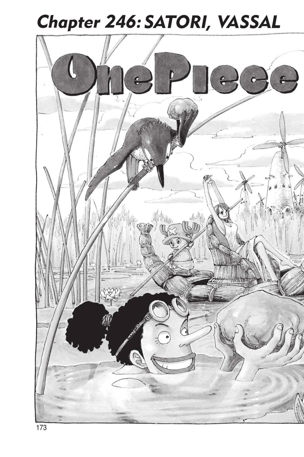 One Piece, Chapter 246 image 002