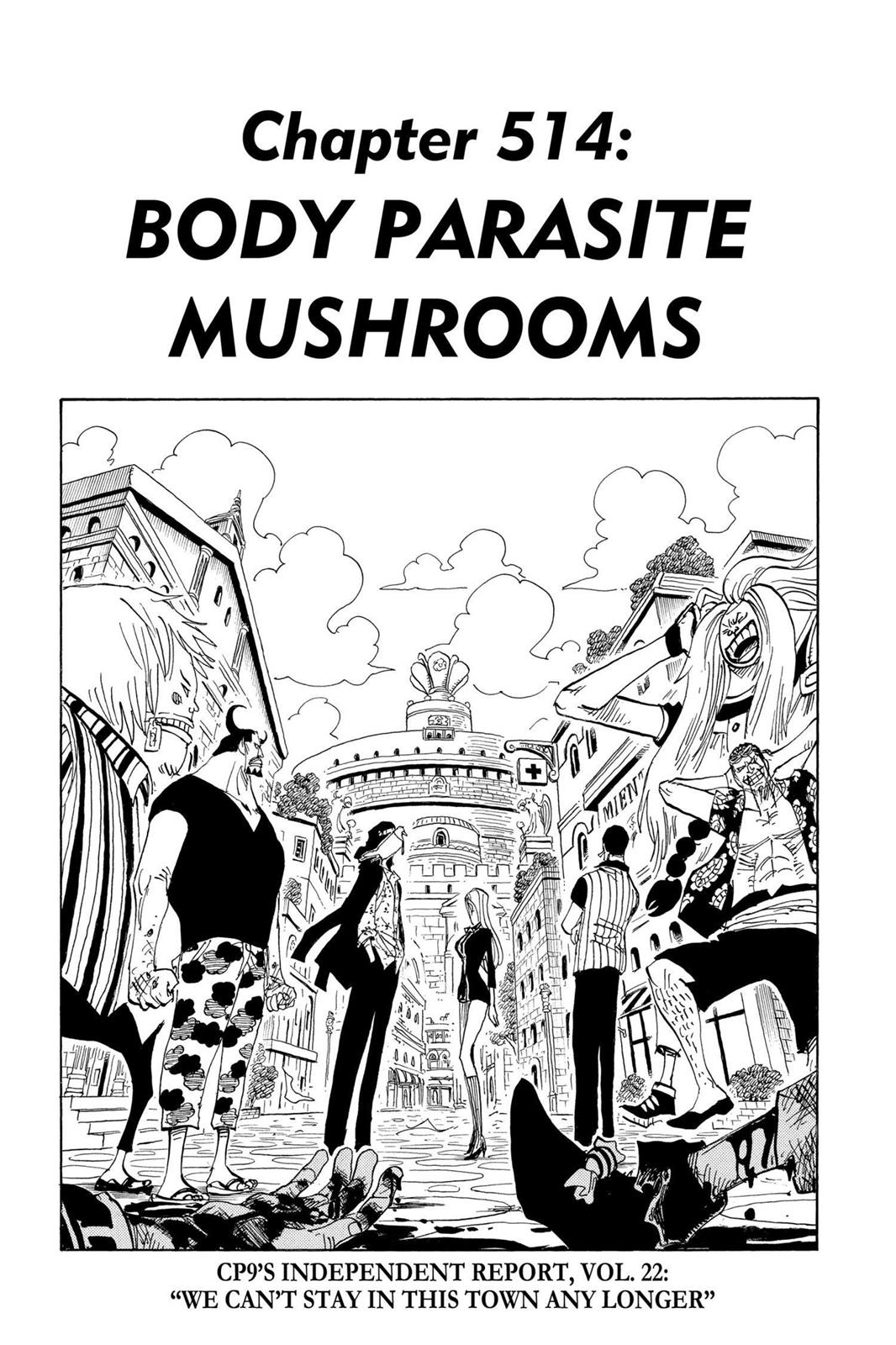 One Piece, Chapter 514 image 001