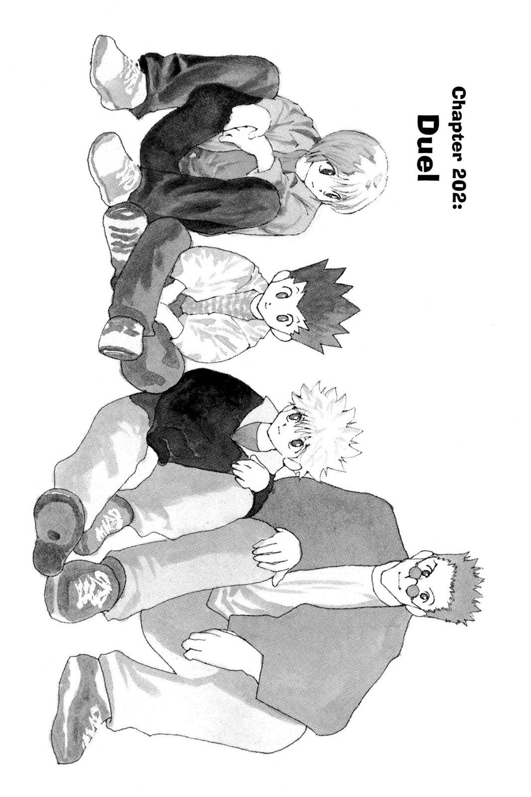 Hunter X Hunter, Chapter 202 image 001