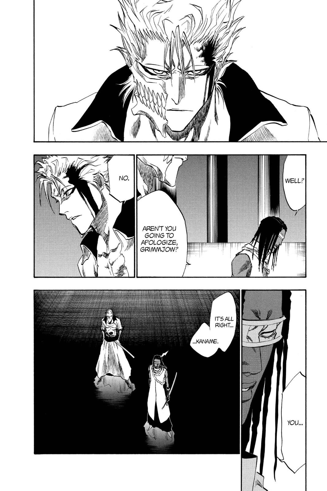 Bleach, Chapter 213 image 010