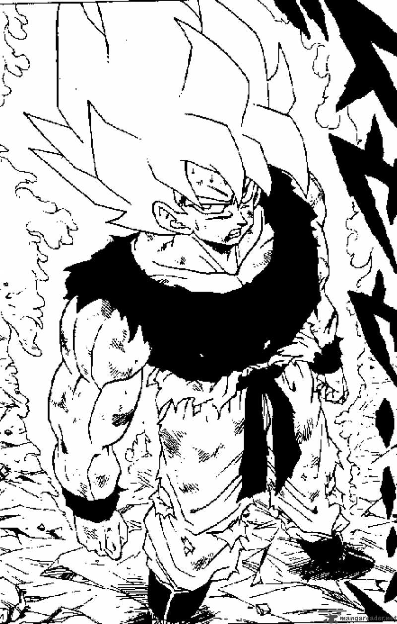 Dragon Ball, Chapter 317 image 016