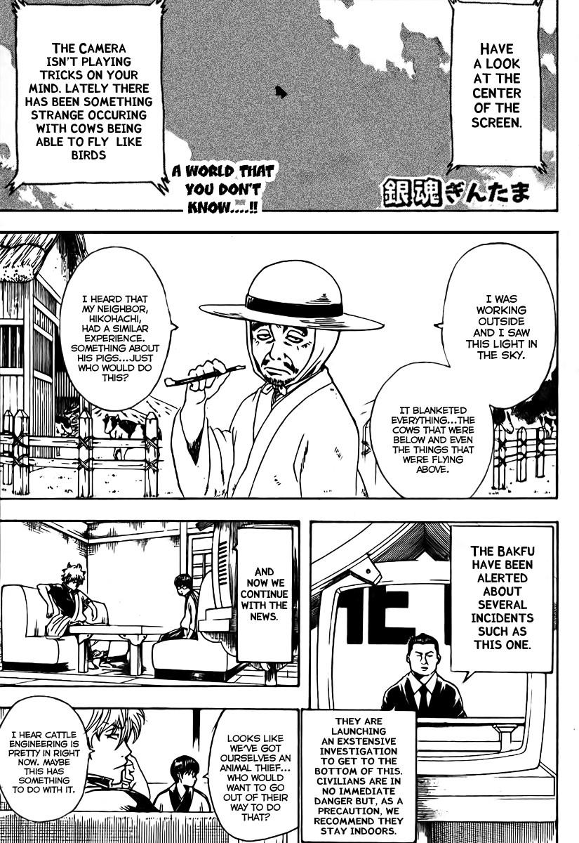 Gintama Chapter, 189 image 003